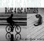 Ride 4 The Animals